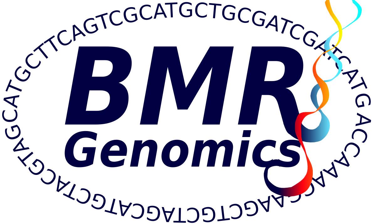 BMR Logo 1